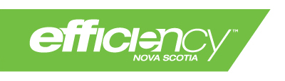 Efficency NS logo